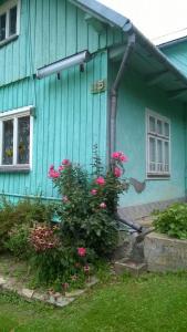 Tatry IX 2020-0075
